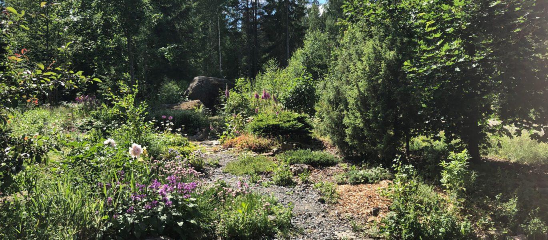 Avoimet_puutarhat_2020_Jussinhaka_Taljala_kivikkopuutarhaa_Iittala_Village